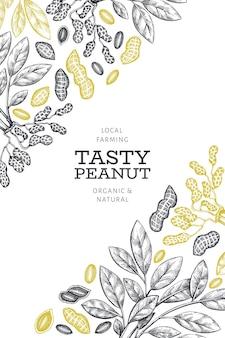Dibujado a mano plantilla de rama y granos de maní. ilustración de alimentos orgánicos sobre fondo blanco. fondo de nuez retro. cuadro botánico de estilo grabado.