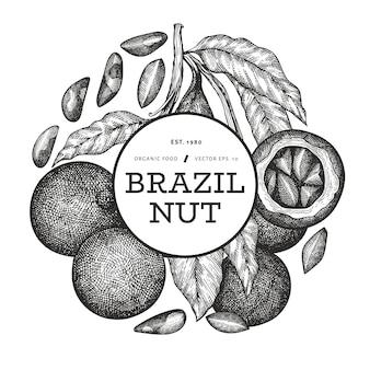 Dibujado a mano rama de nuez brasileña y diseño de granos con ilustración botánica de estilo grabado