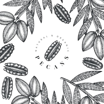 Dibujado a mano rama de nuez y diseño de granos
