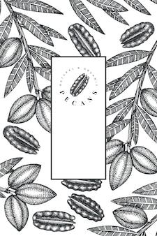 Dibujado a mano rama de pacana y plantilla de diseño de granos.