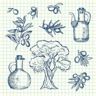 Dibujado a mano ramas de olivo, botellas y árbol en hoja de celda. rama de olivo de arbol y botella de aceite.