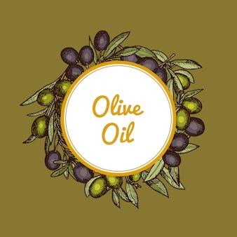 Dibujado a mano ramas de olivo bajo círculo con lugar para texto