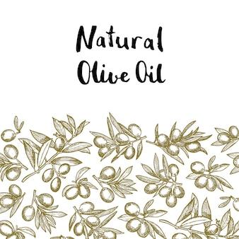 Dibujado a mano ramas de olivo con lugar para el texto