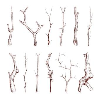 Dibujado a mano ramitas de madera