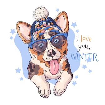 Dibujado a mano retrato de perro corgi en accesorios de navidad.