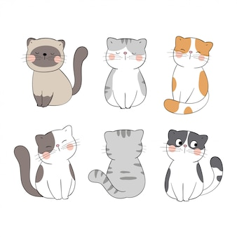 Dibujar colección lindo gato en blanco. estilo de dibujos animados de garabatos.