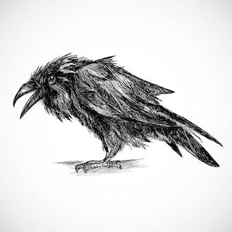 Dibujar a mano diseño de boceto de cuervo