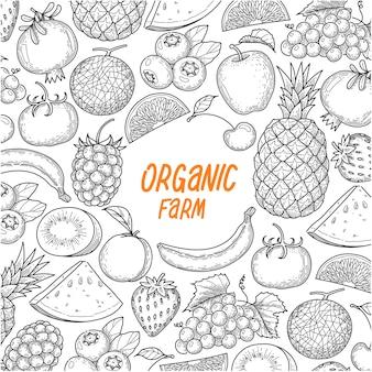 Dibujar a mano fondo de fruta