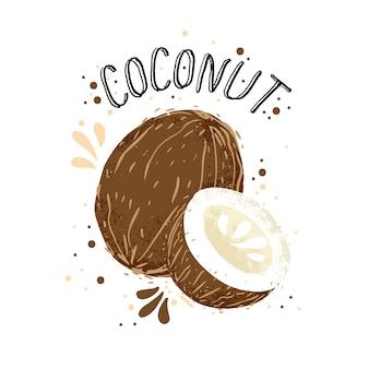 Dibujar a mano ilustración de coco. cocos marrones con jugo splash aislado sobre fondo blanco.