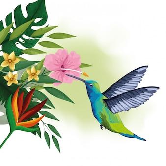 Dibujo de aves exóticas y flores tropicales.