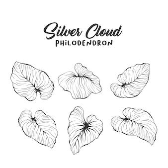 Dibujo de contorno realista de hojas de palma