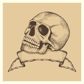 Dibujo de cráneo humano con vector de banner de cinta