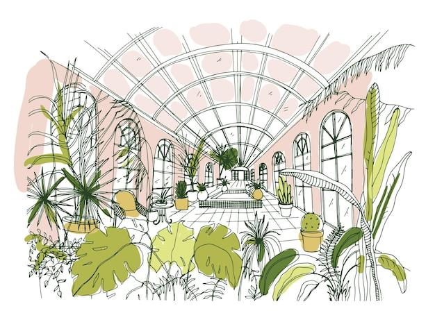 Dibujo elegante del interior del pabellón o invernadero lleno de plantas tropicales con exuberante follaje