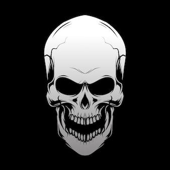 Dibujo a mano cabeza de cráneo, aislado