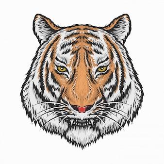 Dibujo a mano ilustración de vector de cabeza de tigre vintage