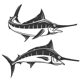 Dibujo a mano de pez espada