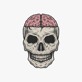 Dibujo a mano vintage cráneo ilustración vectorial cerebro