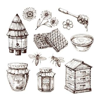 Dibujo de miel abeja y flor de miel, panal y colmena. conjunto aislado vintage dibujado a mano