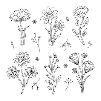Dibujo monocromático de la colección de flores de primavera