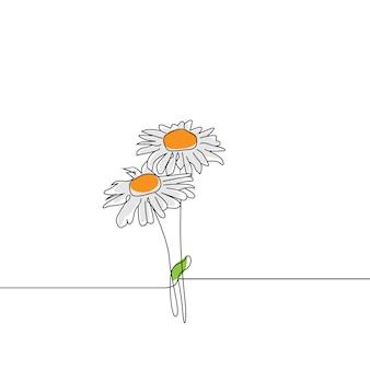 Un dibujo de una sola línea de la flor de la margarita de la belleza aislada en el fondo blanco