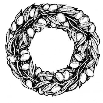 Dibujo vectorial rama de olivo con aceitunas.