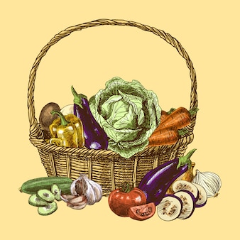 Dibujo de verduras color.