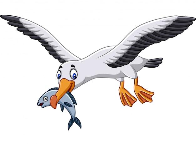 Dibujos animados de albatros comiendo un pez