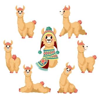 Dibujos animados de alpaca, animal divertido lama en posturas con personajes de ropa tradicional de perú