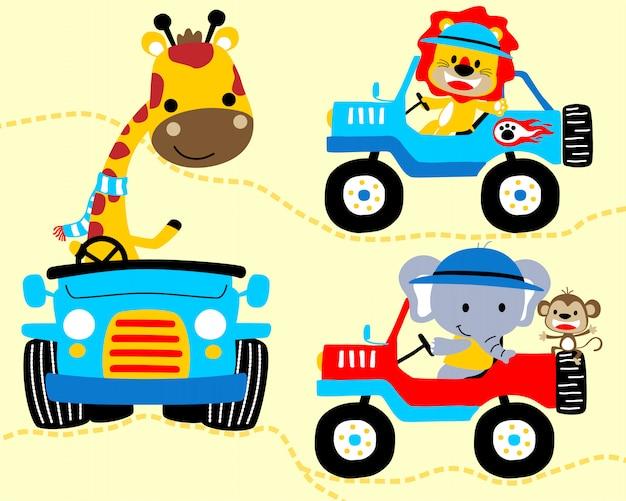 Dibujos animados de animales en coches