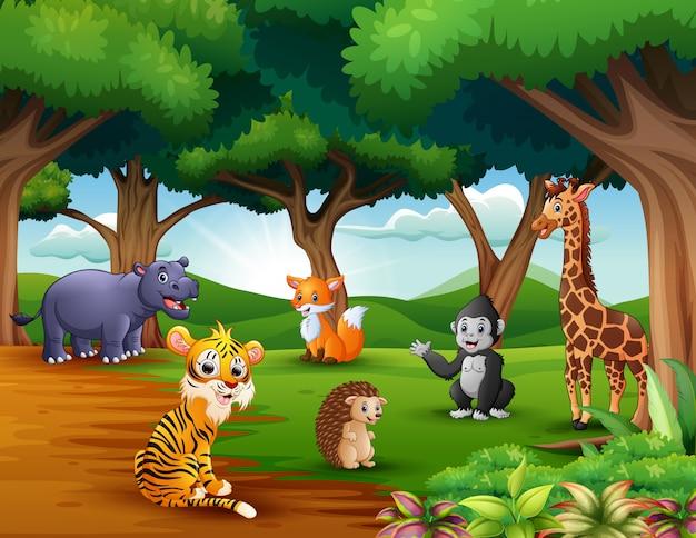 Dibujos animados de animales disfrutando de la naturaleza en la selva.