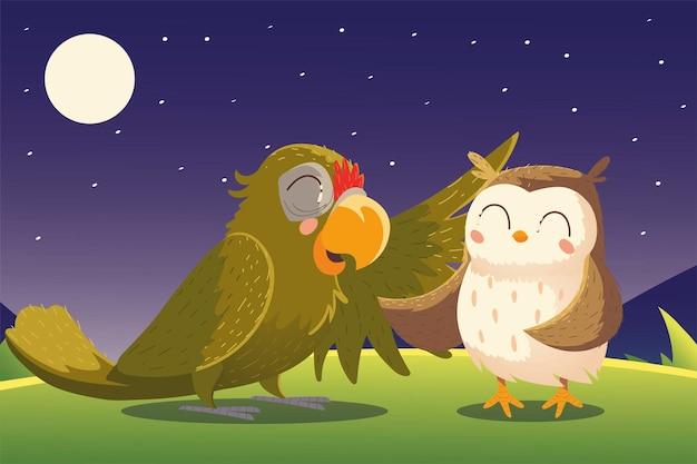 Dibujos animados animales loro y búho noche naturaleza paisaje ilustración