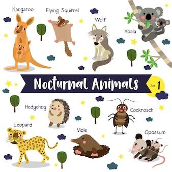 Dibujos animados de animales nocturnos con nombre de animal