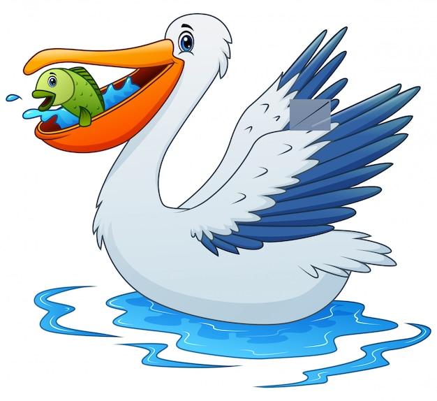 Dibujos animados de animales pelícano comiendo un pez en el agua
