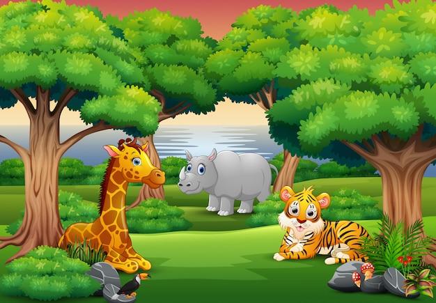 Dibujos animados de animales salvajes disfrutando en la selva.