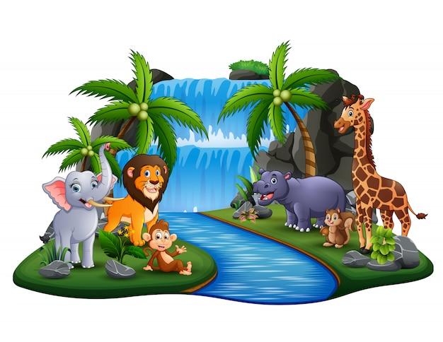 Dibujos animados de animales salvajes en escena de la isla