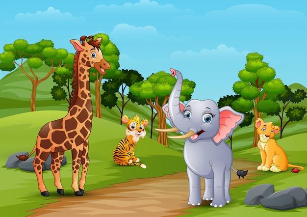 Dibujos animados de animales salvajes jugando en la selva