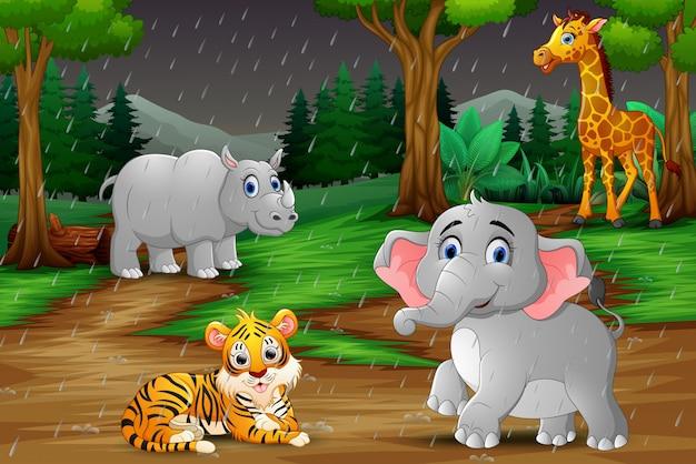 Dibujos animados de animales salvajes bajo la lluvia en un bosque