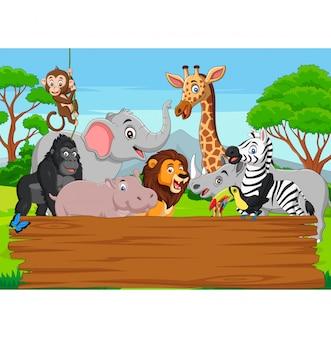Dibujos animados de animales salvajes con tablero en blanco en la selva