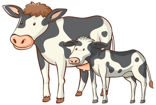 Dibujos animados de animales de vaca madre y bebé sobre fondo blanco