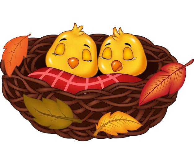 Dibujos animados de aves bebé durmiendo en el nido