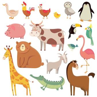 Dibujos animados de bebé oso salvaje, jirafa, cocodrilo, pájaro