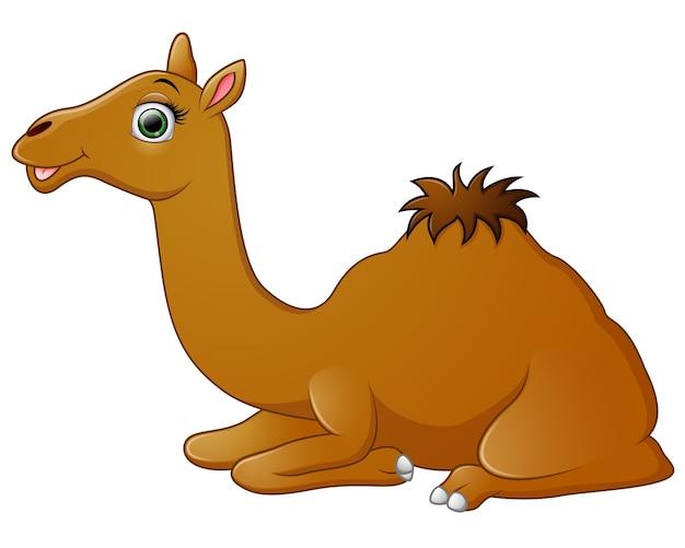 Dibujos animados de camellos feliz tumbado