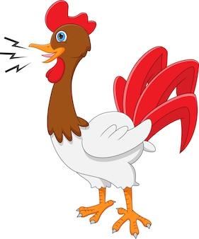 Dibujos animados de canto de gallo sobre fondo blanco