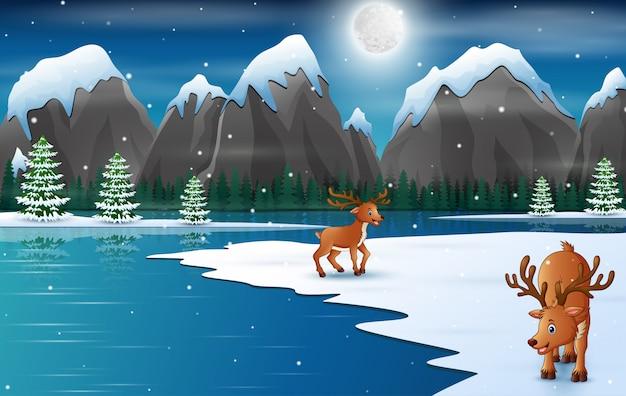 Dibujos animados de ciervos felices en la temporada de invierno