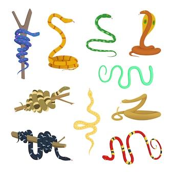 Dibujos animados de diferentes serpientes y reptiles.