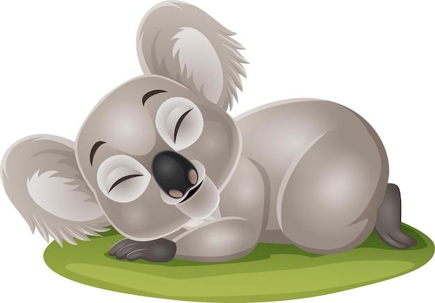 Dibujos animados divertido bebé koala durmiendo en la hierba