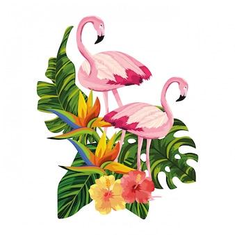 Dibujos animados de flamencos tropicales