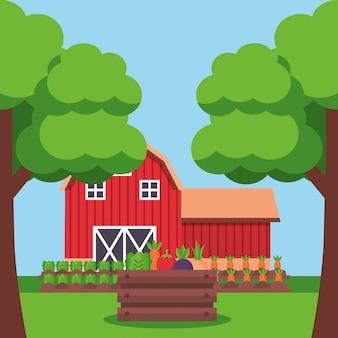 Dibujos animados frescos de granja