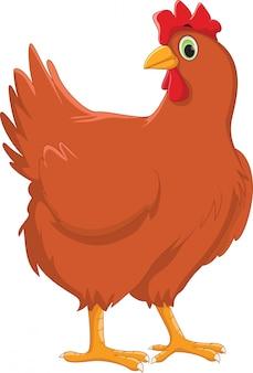 Dibujos animados de gallina linda