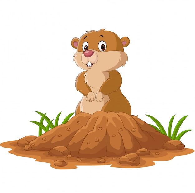 Dibujos animados gracioso marmota de pie